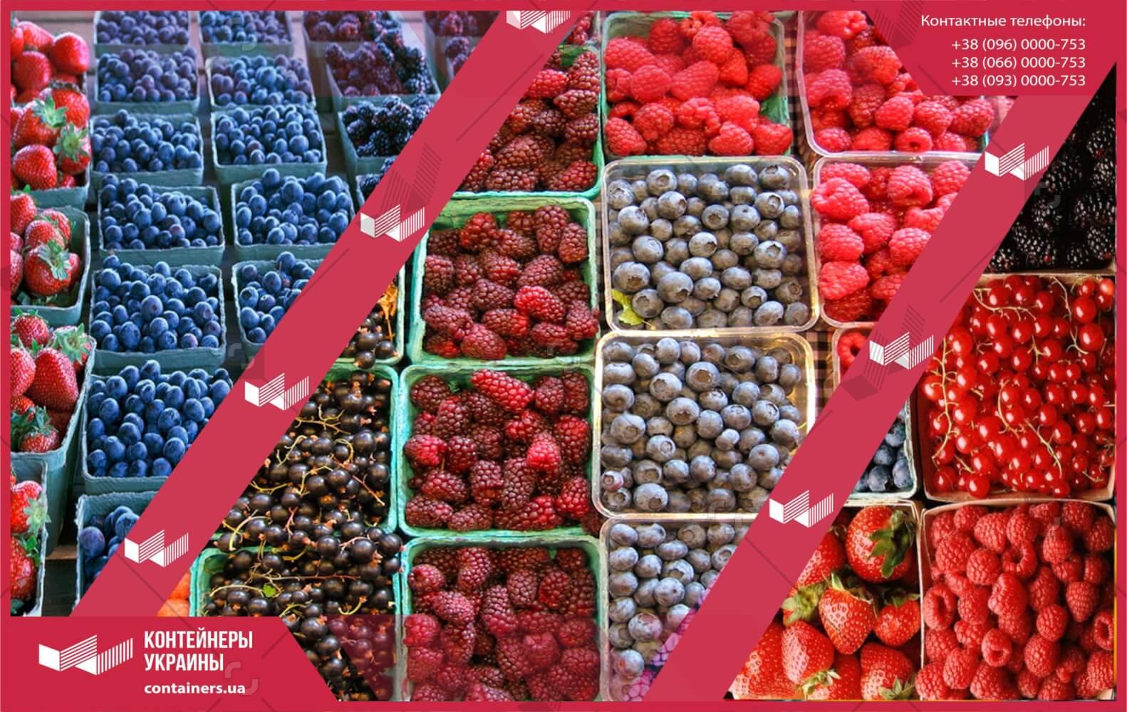 Хранение и перевозка ягод