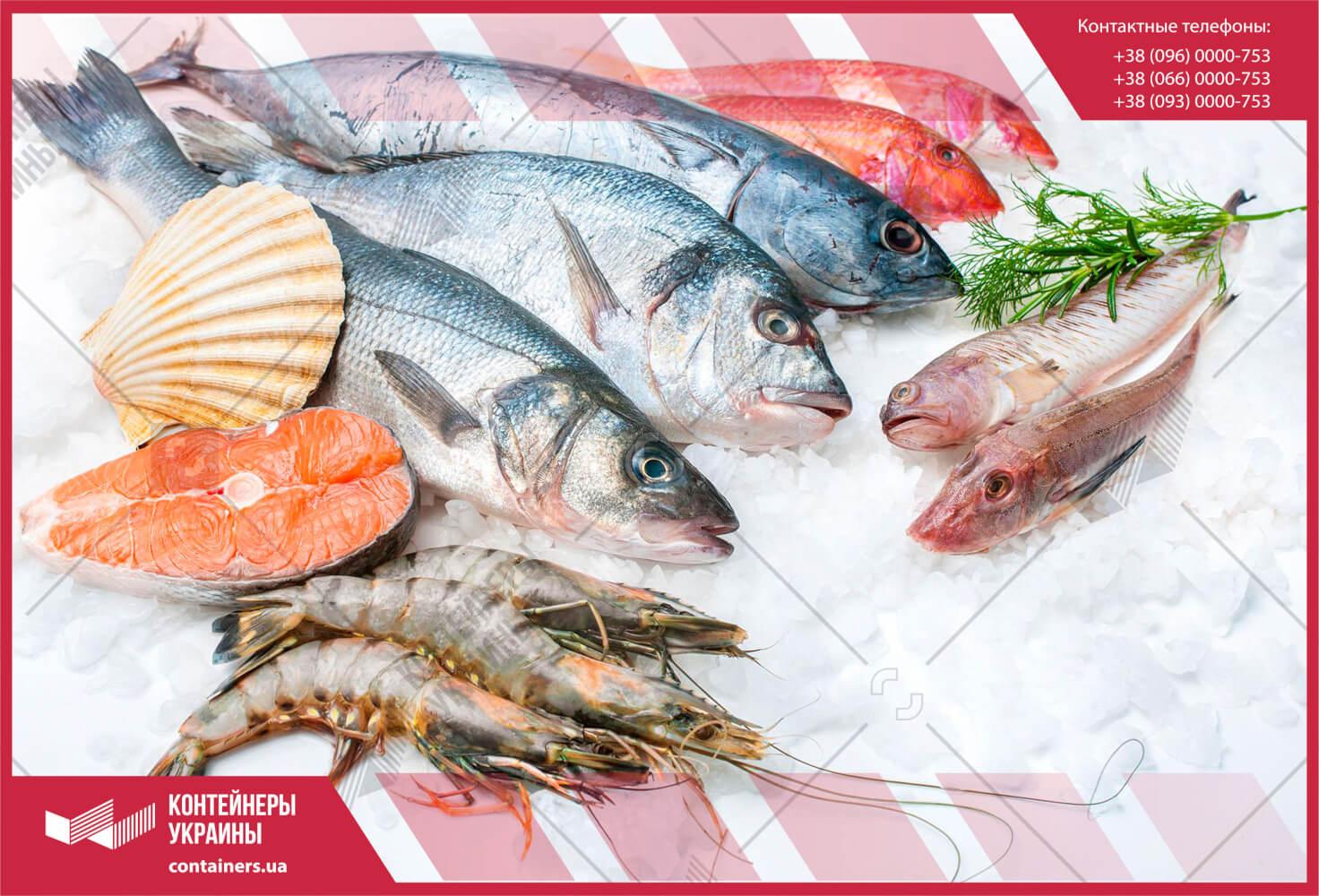 Как хранить и перевозить рыбу и морепродукты